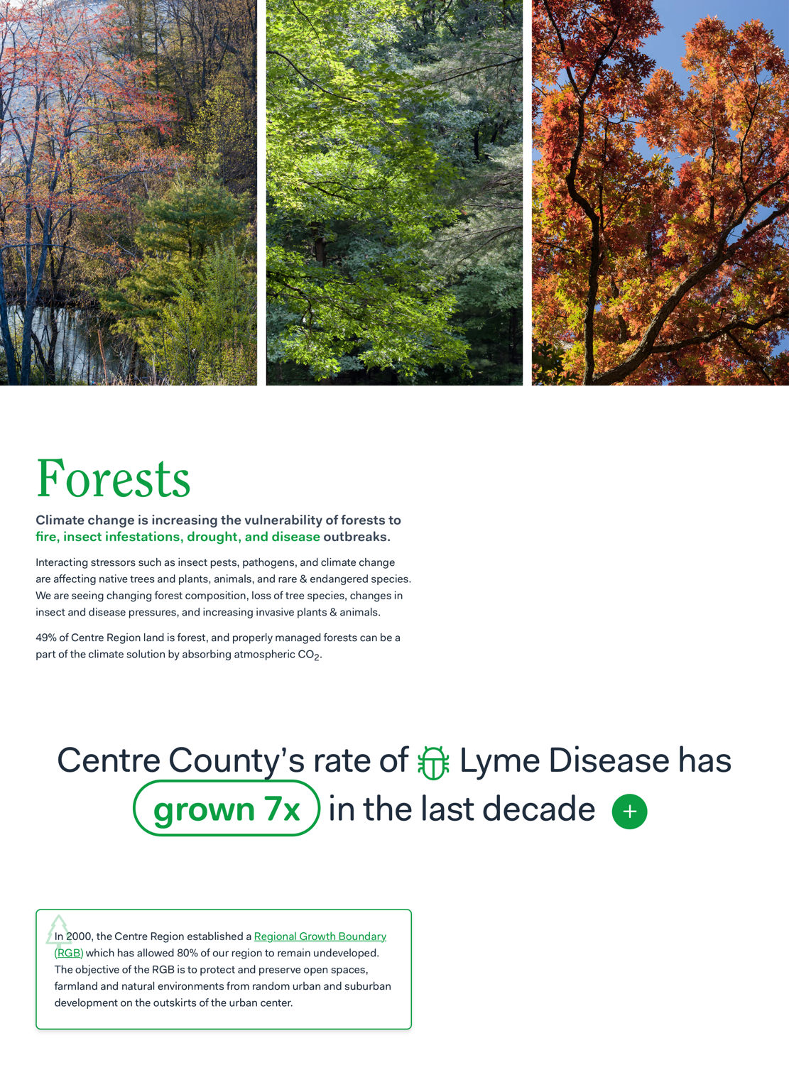 Screenshot of the Forests section of centresustains.com/climate